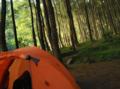 Camping di suaka elang.png