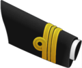 Can-LCdr-Capc-2010-OF3.png