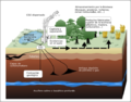 Carbon sequestration-2009-10-07.es.png