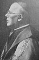 Cardinal Dolci.JPG
