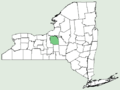 Carex leavenworthii NY-dist-map.png