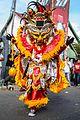 Carnival-3419.jpg