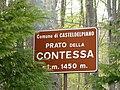 Casteldelpiano - Prato della Contessa 0.JPG