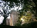 Castelo de Torres Novas (34).JPG
