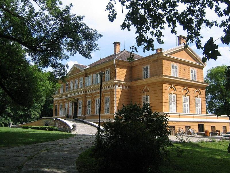 Fișier:Castelul Regal de la Savarsin3.jpg