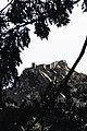 Castle in Sintra.jpg