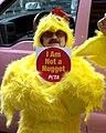 Centerfold Stripper Midgets Chickens 11 2010 Shankbone.jpg
