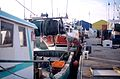 Chalutiers de pêche côtière (7).jpg