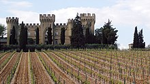 Chateauneuf vineyard & castle.jpg