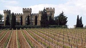 Rhône wine - A vineyard in Châteauneuf-du-Pape, in southern Rhône.