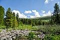 Chemalsky District, Altai Republic, Russia - panoramio (16).jpg