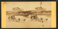 Children in goat cart on beach, from Robert N. Dennis collection of stereoscopic views 5.png