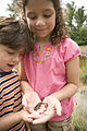 Children with a tadpole.jpg