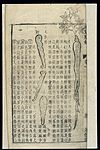 Chinese Materia medica, C17; Plant drugs, Ginseng Wellcome L0039339.jpg