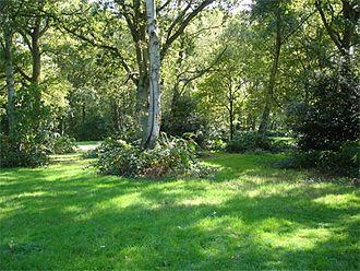 Chorleywood - Chorleywood Common