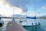 Circolo Nautico NIC Porto di Catania Sicilia Italy Italia - Creative Commons by gnuckx (5386864382).jpg