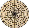 Cirkel spinnenweb goudkleurig.jpg