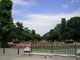 Cișmigiu Gardens - Image: Cismigiu Garden Bucharest 7