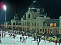 City Park Ice Rink - panoramio.jpg