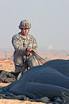 Coalition partners participate in friendship jump over Egypt DVIDS214751.jpg