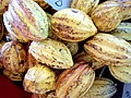 Cocoa Fruits - panoramio.jpg