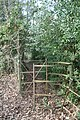 Concealed Kissing Gate - geograph.org.uk - 1731224.jpg