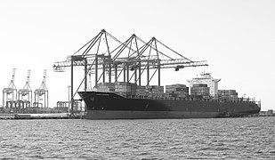 Conti Darwin ship 2016 G2.jpg