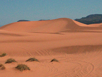 Coral Pink Sand Dunes State Park - The sand that makes up the pink colored dunes is derived from the Navajo Sandstone
