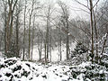 Cormeilles en parisis 45 snow.jpg
