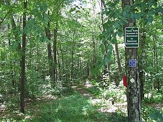 Spencer State Forest
