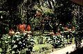 Costa Rica Tortugero Jardin Hotel Ilan Ilan - panoramio.jpg