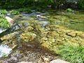Cotobade-Rio Almofrey77 (4699495250).jpg