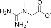 Kreatin monohydrat wiki