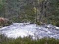 Crest of a waterfall, Glen Strathfarrar. - geograph.org.uk - 1531626.jpg