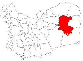 Commune in Tulcea, Romania