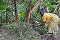 Cultivatrice camerounaise1.jpg