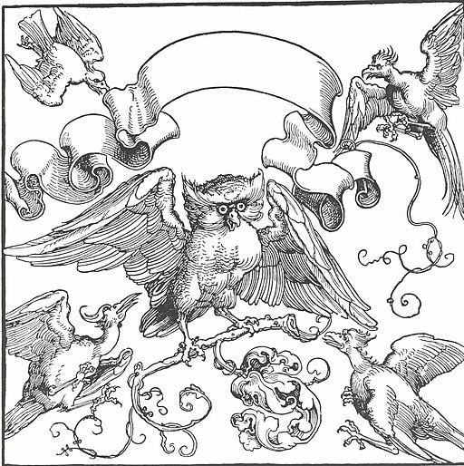 Dürer - Die Eule im Kampf mit anderen Vögeln
