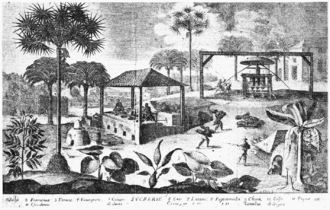 Escort in Fort-Liberte