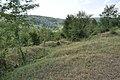 Dacian Fortress Buridava 04.JPG