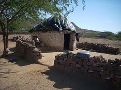 Dalit House