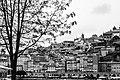 DanielAmorim-Fotografia-Portugal 14.jpg