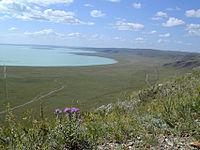 Daursky reserve.jpg