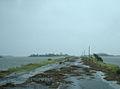 Debris on Beach Road (6094145952).jpg