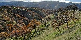 Del Valle Regional Park - Image: Del Valle Regional Park Eagle Crest Trail