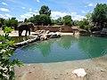 Denver Zoo 12.jpg