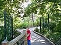 Denver Zoo Nurture Trail.jpg