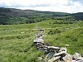 Dilapidated ffridd wall - geograph.org.uk - 492703.jpg