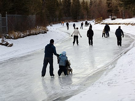 Ice skating on the frozen stream in Bowness Park. Winters in Calgary are cold, with temperatures dropping below -20 degC (-4 degF). Dilmaghanian00711.JPG