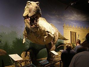 Creation museum carbon dating