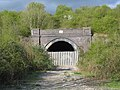 Disused Railway Tunnel - geograph.org.uk - 2319.jpg
